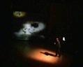 sombras_video